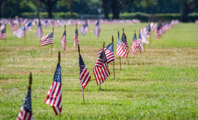 Veterans Day Flags