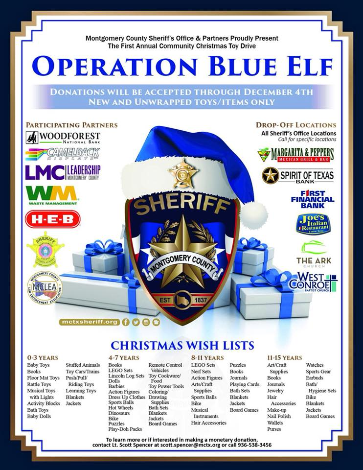 operation blue elf flyer