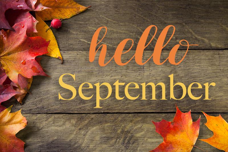 Hello September Leaves Autumn   Hello Woodlands