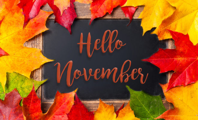 31 Things to Do in November | Hello Woodlands