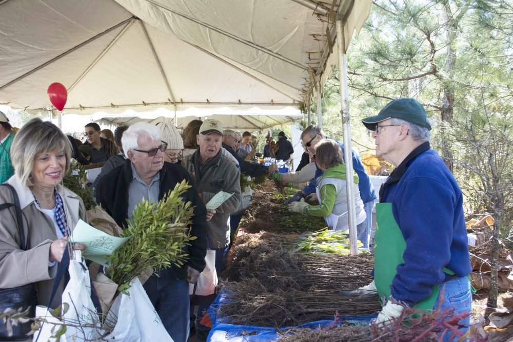 Arbor Day woodlands township
