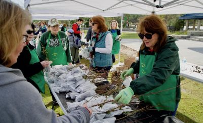 The Woodlands 44th Annual Arbor Day Tree Giveaway 2020