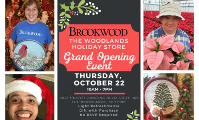 Brookwood Holiday Store Howard Hughes 2020