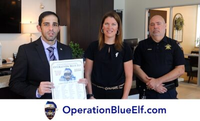 Operation Blue Elf