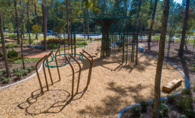 The Woodlands Hills Daisy Park