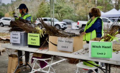 45th Annual Arbor Day Tree Giveaway: Drive -Through