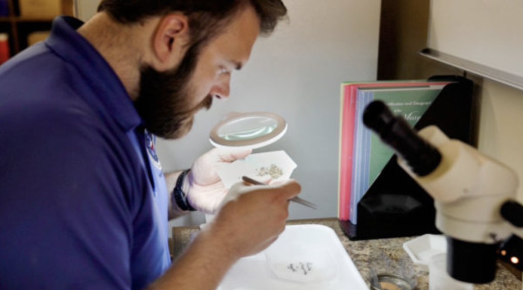 West Nile Mosquito Abatement Treatment