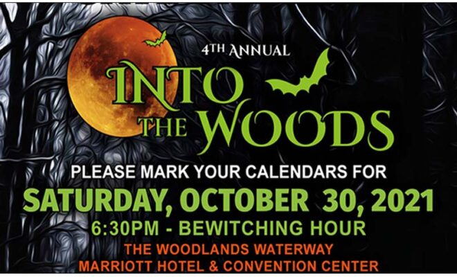 Into the Woods 2021 the woodlands charities